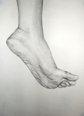 Drawing of a foot