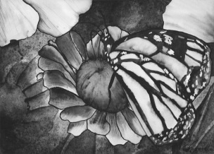 "Watercolour painting ""Monarch"""