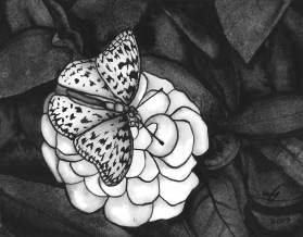 Painting of a butterfly on a flower