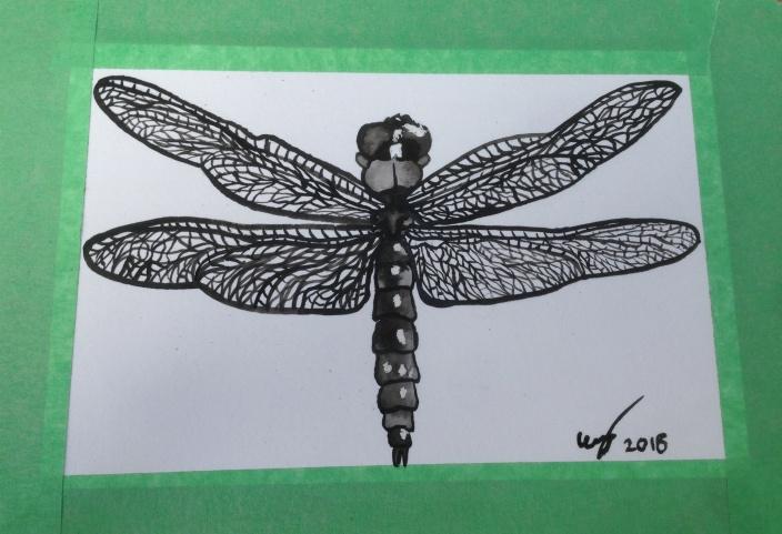 Dragonfly at Art Walk 2018