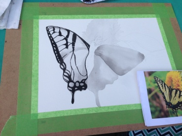 Part of a butterfly painted